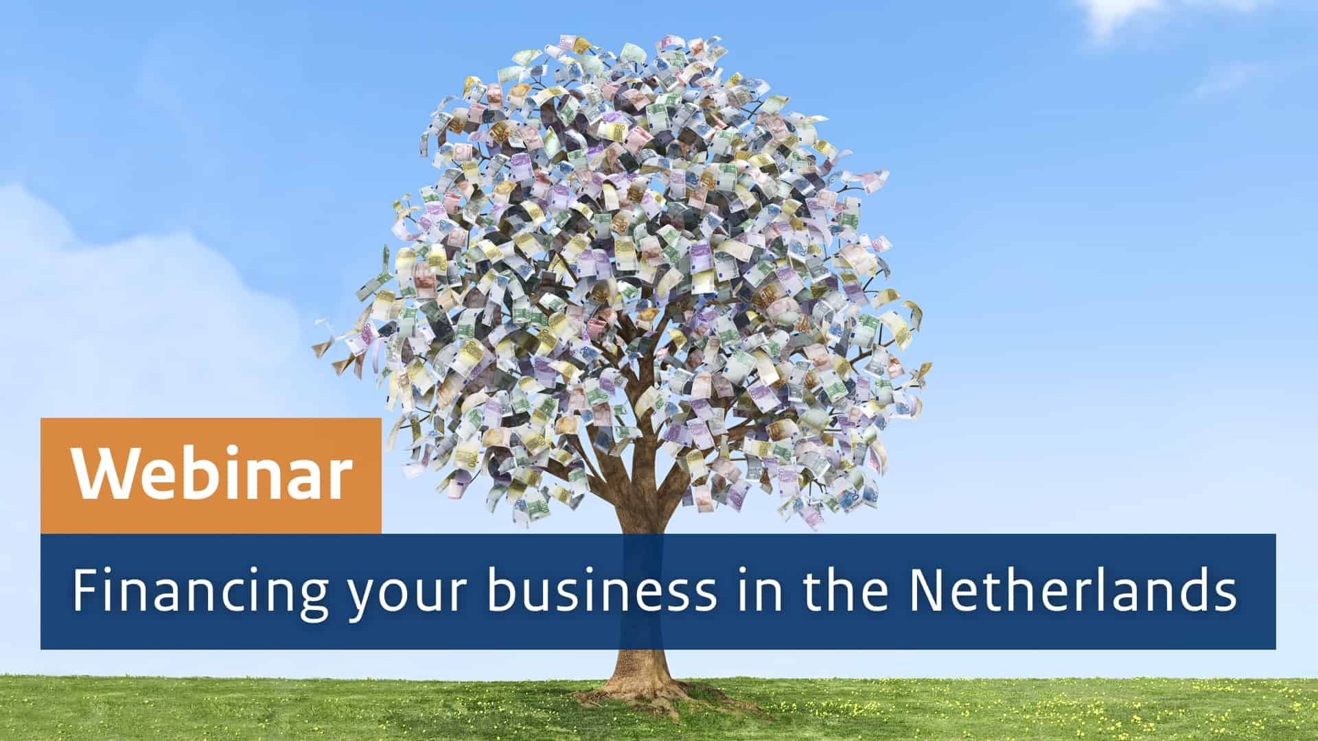 Webinar: Financing your business in the Netherlands